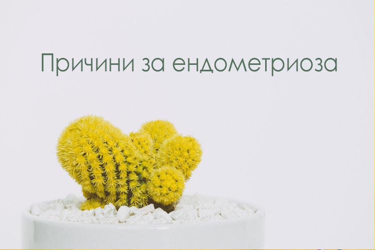 Превод: Причини за ендометриоза